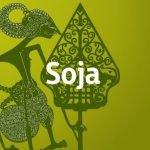 soja-300x300